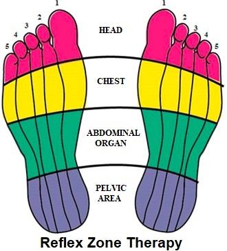 Reflex Zone Therapy Chart - a type of reflexology